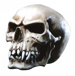 Picture of Orc Skull 16 cm