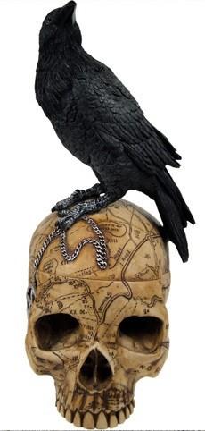 Picture of Raven On Salem Skull Box