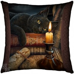 Picture of Witch Cat Cushion (Lisa Parker)