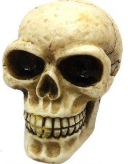 Picture of Skull Gear Knob