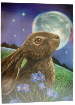 Picture of Moon Gazing Hare 3D Poster 28.5 x 38.5cm