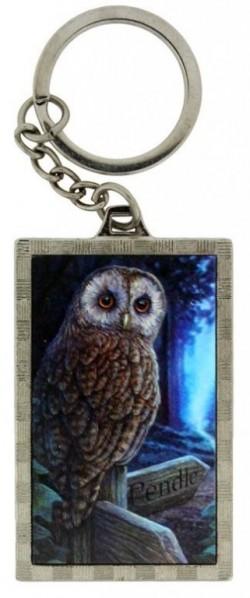 Picture of Wise Owl 3d Keyring (Lisa Parker)