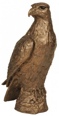 Picture of Golden Eagle Bronze Sculpture (Harriet Dunn) 30 cm