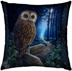 Picture of Way of the Witch Owl Cushion (Lisa Parker)