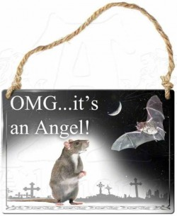 Picture of Omg Its An Angel! Small Steel Plaque