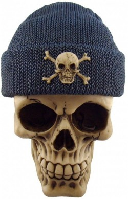 Picture of Blue Beanie Hat Skull