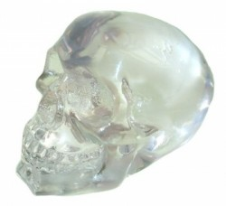 Picture of Skull of Purity Ornament
