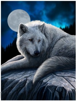 Picture of Guardian of The North Wolf 3D Poster 28 x 38 cm