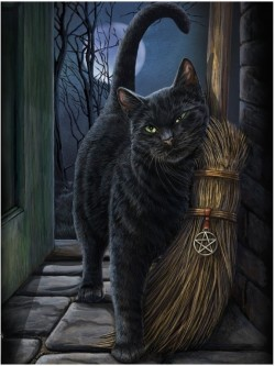 Picture of A Brush With Magic Black Cat 3D Picture (Lisa Parker) 28 x 38 cm