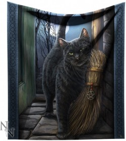 Picture of  A Brush With Magic Cat Throw (Lisa Parker) 160cm LARGE