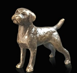 Picture of Border Terrier Bronze Miniature (Butler and Peach)