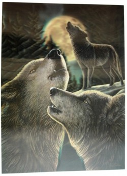 Picture of Wolf Song 3D Poster 28.5 x 38.5cm