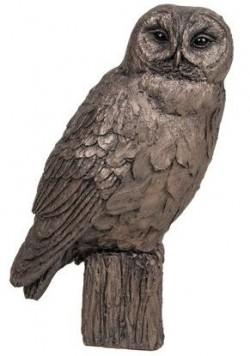 Picture of Tawny Owl Bronze Sculpture (Harriet Dunn) 20 cm