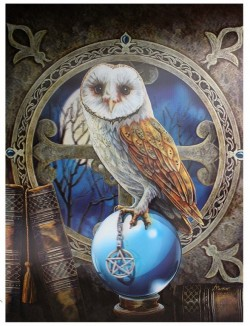 Picture of Spell Keeper Owl 3D Picture (Lisa Parker)