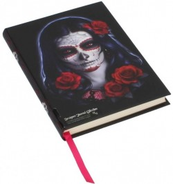 Picture of Sugar Skull Embossed Journal (James Ryman)