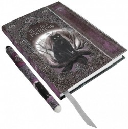 Picture of Witches Spell Book Embossed Journal and Pen 17cm (Luna Lakota)