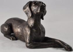 Picture of Weimaraner Bronze Dog Sculpture (Harriet Glen) 24cm