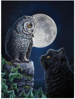 Picture of Purrfect Wisdom 3D Picture (Lisa Parker) 28 x 38 cm