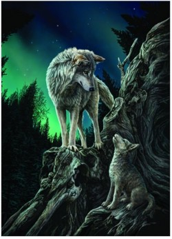 Picture of Guidance Wolf 3D Poster 28 x 38 cm