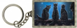 Picture of Wish Upon a Star Cat 3D Keyring (Lisa Parker)