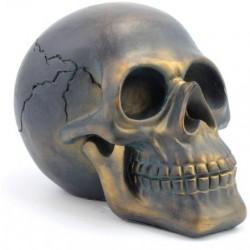 Picture of Dark Bronze Skull Large (Leonardo Collection)