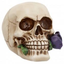 Picture of Romantic Skull Purple NEW