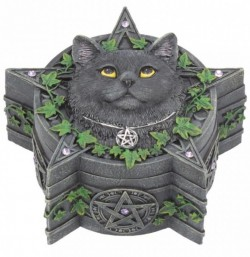 Picture of The Charmed One Box (Lisa Parker) Black Cat Design