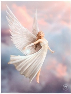 Picture of Ascendance Canvas Angel Picture (Anne Stokes) 25 x 20 cm