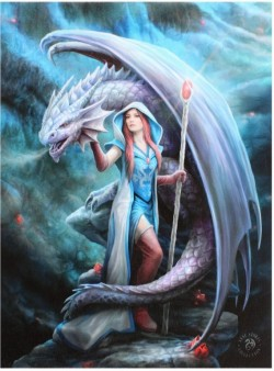 Picture of Dragon Mage Canvas Picture (Anne Stokes) 25 x 20 cm