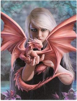 Picture of Dragon Kin Canvas Picture (Anne Stokes) 25 x 20 cm