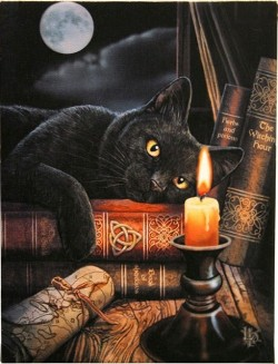 Picture of Witching Hour Canvas Black Cat Picture (Lisa Parker) 25 x 20 cm