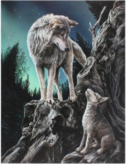 Picture of Guidance Canvas Wolf Picture (Lisa Parker) 25 x 20 cm