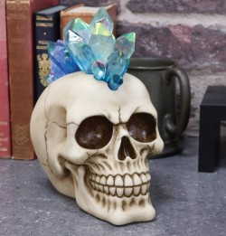 Picture of Crystal Hawk Skull Ornament Light Feature