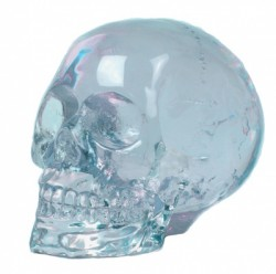 Picture of Quartz Skull (Small)