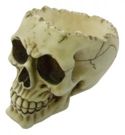 Picture of Lobo Skull Bowl