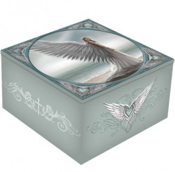Picture of Spirit Guide Mirror Box (Anne Stokes)